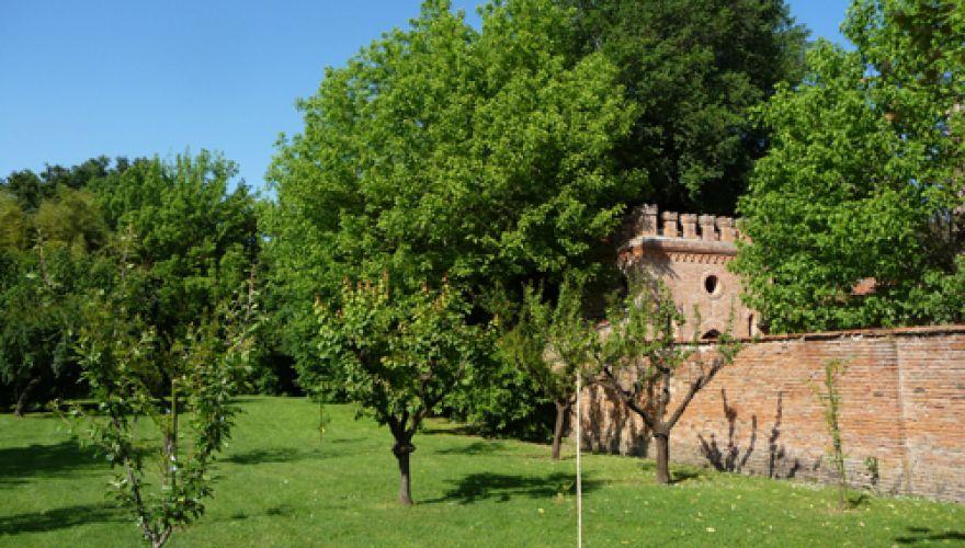 Camera singola a Ozzano Emilia